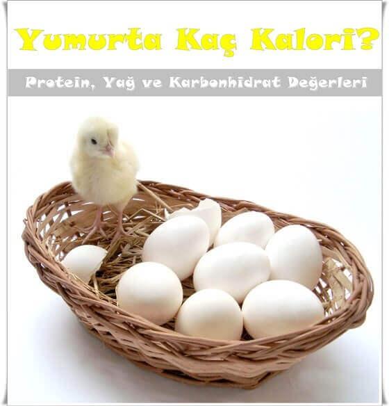 Yumurta Kalorisi Haşlanmış, Tavada, Omlet