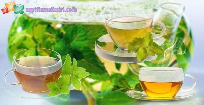 Safran Zayıflama Çayı Nedir? Nasıl Kullanılır?